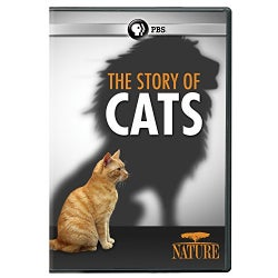 Nature: The Story of Cats (DVD)