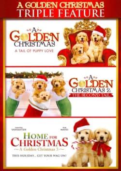 A Golden Christmas (DVD)