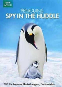 Penguins: Spy In The Huddle (DVD)