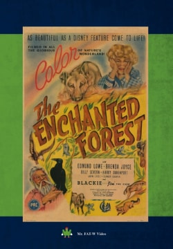 The Enchanted Forest (DVD)