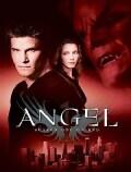 Angel: Season 1 (DVD)