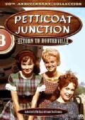 Petticoat Junction: Return to Hooterville (DVD)