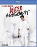 Anger Management Season 1 (Blu-ray Disc)