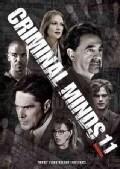 Criminal Minds: The Eleventh Season (DVD)