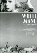 White Man - Janus Films (DVD)
