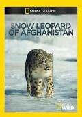 Snow Leopard of Afghanistan (DVD)