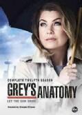 Grey's Anatomy: Season 12 (DVD)