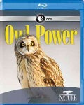 Nature: Owl Power (Blu-ray Disc)