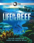 Life on the Reef (Blu-ray Disc)