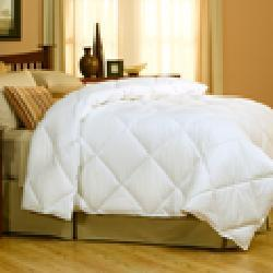 Natural Down Box Step Comforter