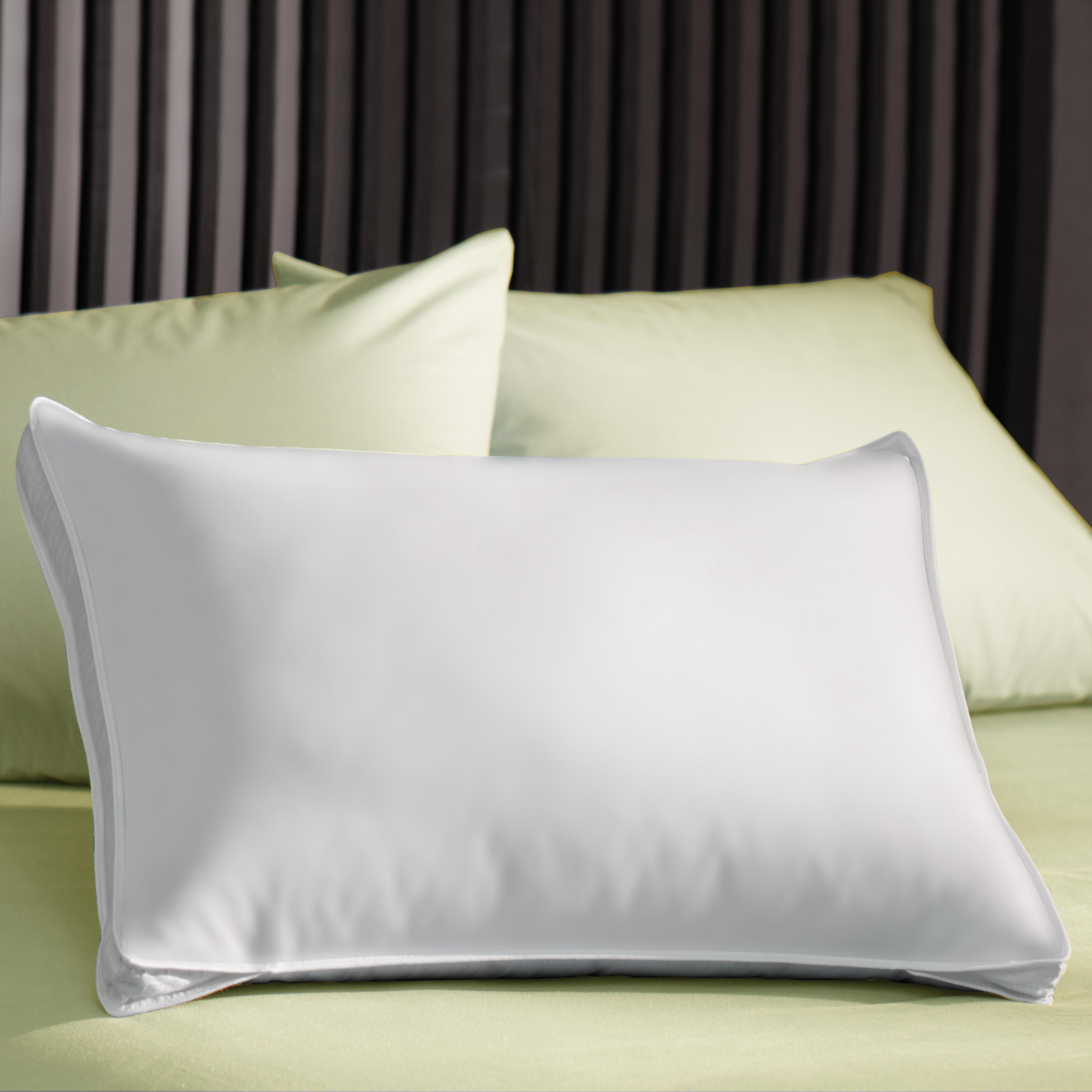 Extra Loft 1000 Thread Count Gusseted Pillow (Set of 2)