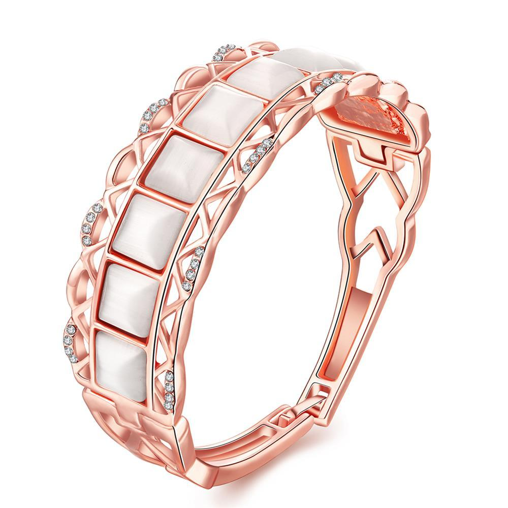 Vienna Jewelry 18K Rose Gold Bangle with Coral Gemstones with Austrian Crystal Elements