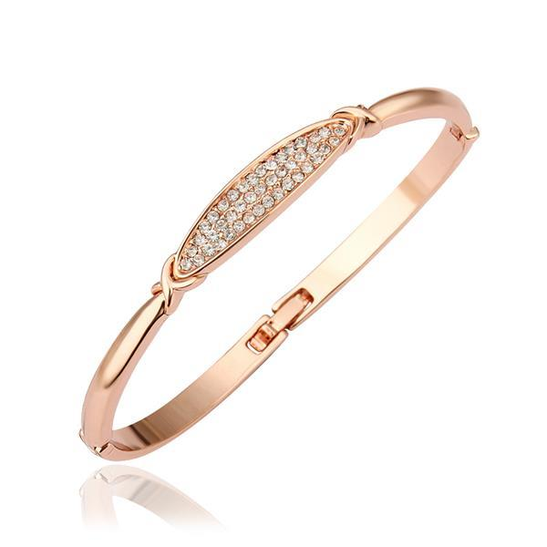 Vienna Jewelry 18K Gold Bangle with Jewels Plate Emblem with Austrian Crystal Elements