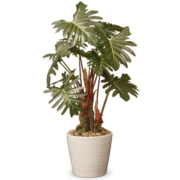 21-inch Philodendron Plant in Green Ceramic Pot