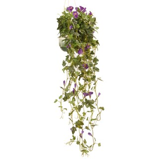 Lilac 25-inch Hanging Petunia Plant