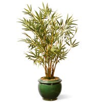 22-inch Bamboo Plant in Ceramic Green Pot