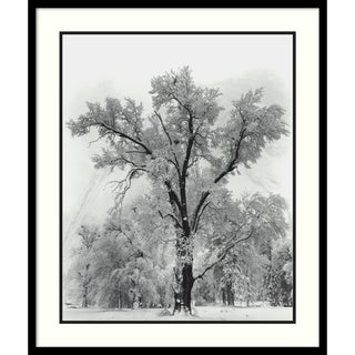 Link to Framed Art Print 'Oak Tree, Snowstorm, Yosemite National Park-1948' by Ansel Adams 27 x 32-inch Similar Items in Art Prints