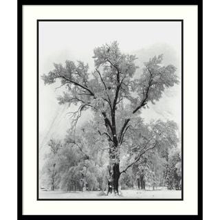 Framed Art Print 'Oak Tree, Snowstorm, Yosemite National Park-1948' by Ansel Adams 27 x 32-inch