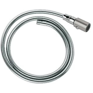 Grohe Ladylux Grohe Ladylux Pro Hose and Head Super Steel