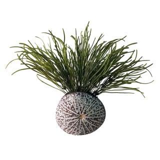 D&W Silks Pearl Grass in Splattered Mocha Sanddollar Planter