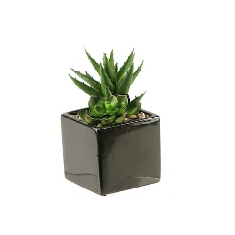 D&W Silks Plants in Square Ceramic Planter