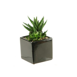 D&W Silks Plants in Square Ceramic Planter