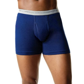 Hanes Men's Assorted Blues Boxer Brief (Pack of 2)