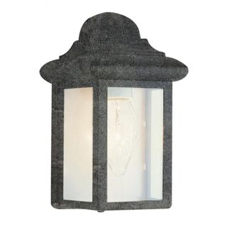 Cambridge Swedish Iron Finish Outdoor Wall Sconce with Clear Shade