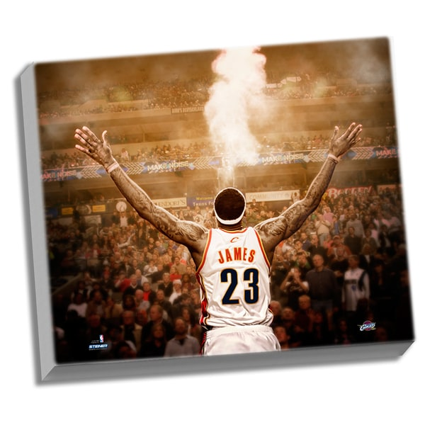 "LeBron James ""Powder"" Back View 24x26 Stretched Canvas"