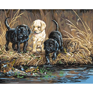 """Paint By Number Kit 16""""X20""""-Turtle Hunters"""