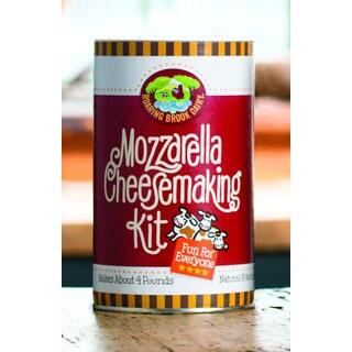 Mozzarella Cheesemaking and Ricotta/Cottage Cheese DIY Kits (Set of 2)