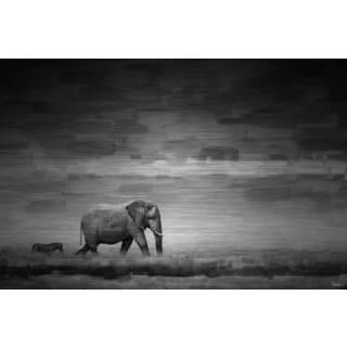Parvez Taj 'Elephant' Painting Print on Brushed Aluminum