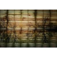 Parvez Taj 'Calming Reflection' Natural Pine Wood Art - Multi