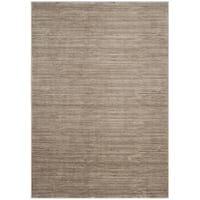 Safavieh Vision Contemporary Tonal Light Brown Area Rug - 3' x 5'