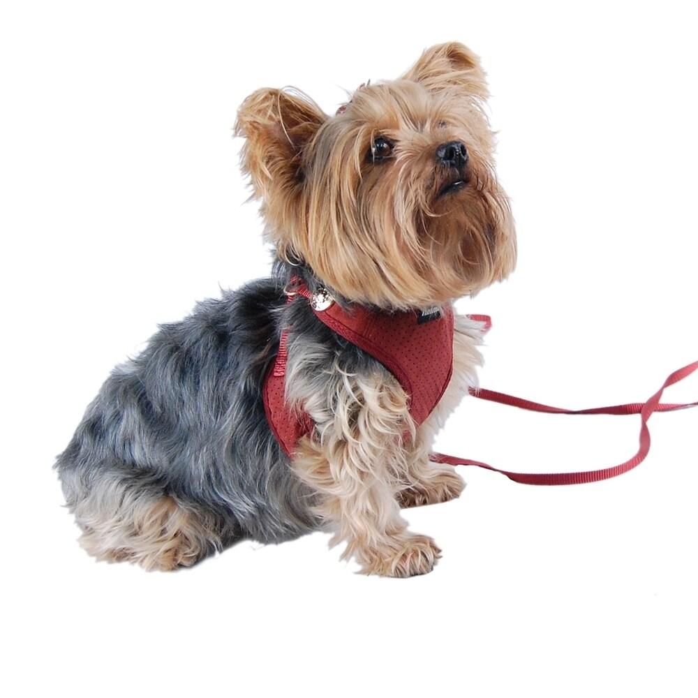 ANIMA Adjustable Dog Harness with Leash (Large, Burgundy)...