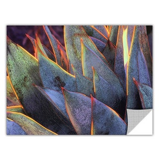 Dean Uhlinger Sun Succulent, Art Appeelz Removable Wall Art Graphic