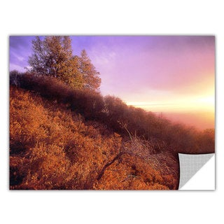 Dean Uhlinger Fire Light, Art Appeelz Removable Wall Art Graphic