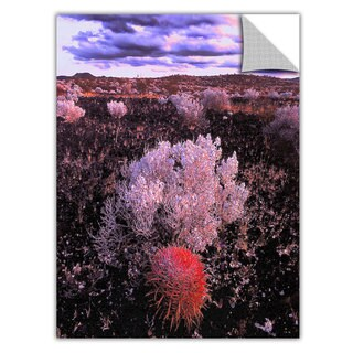 Dean Uhlinger Mojave Desert Dusk, Art Appeelz Removable Wall Art Graphic