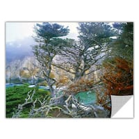 Dean Uhlinger Whalers Cove Morning Point Lobos, Art Appeelz Removable Wall Art Graphic