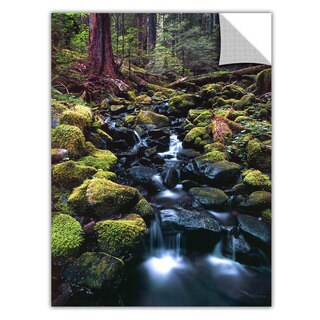 Dean Uhlinger Rain Forest Morning, Art Appeelz Removable Wall Art Graphic (4 options available)