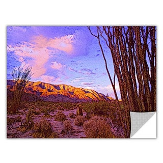 Dean Uhlinger Ocotillo Sunset, Art Appeelz Removable Wall Art Graphic
