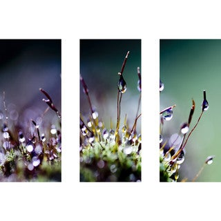 Marmont Hill - Handmade Mossy Things Triptych Canvas Art