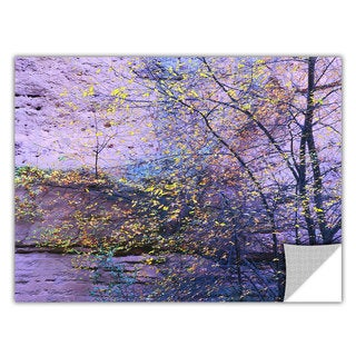 Dean Uhlinger Aravaipa Canyon Dusk, Art Appeelz Removable Wall Art Graphic