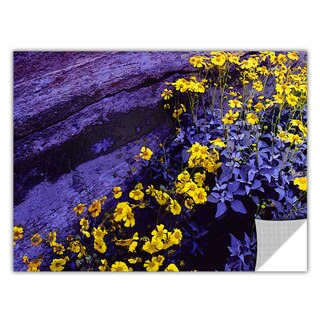 Dean Uhlinger Desert Sunflower Dusk, Art Appeelz Removable Wall Art Graphic