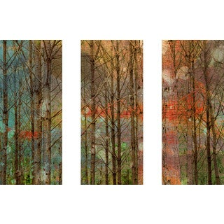 Marmont Hill 'Through the Trees Triptych' Canvas Art - Multi-color