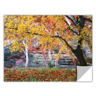 Dean Uhlinger Aravaipa Canyon, Art Appeelz Removable Wall Art Graphic