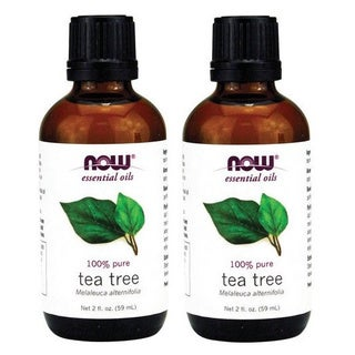 Now Foods 2-ounce Tea Tree Essential Oil (Pack of 2)