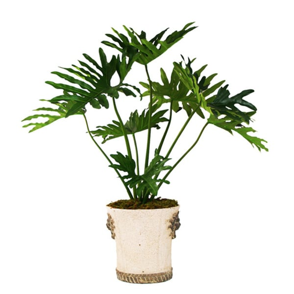 Silk Monstera Tree In an Embellished Ceramic Container