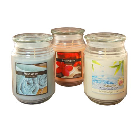 Fresh Scented 18-ounce Candles (Set of 3)