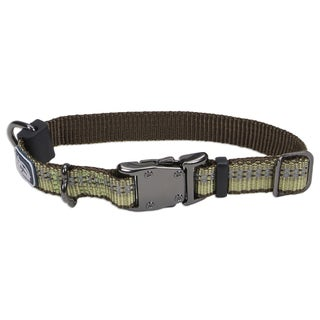 Coastal K9 Explorer Green Reflective Adjustable Collar